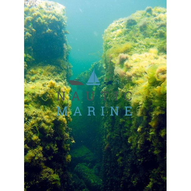 Dykkertur Bornholm