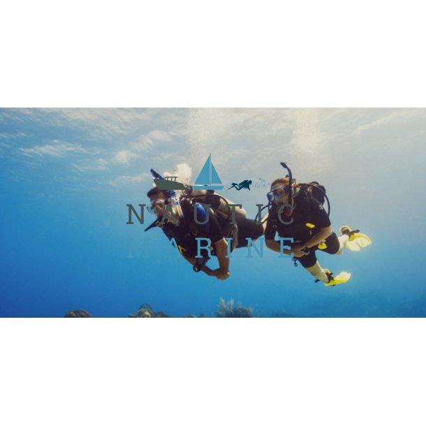 Scuba Diver kursus 15 November Greve - Mosede Havn
